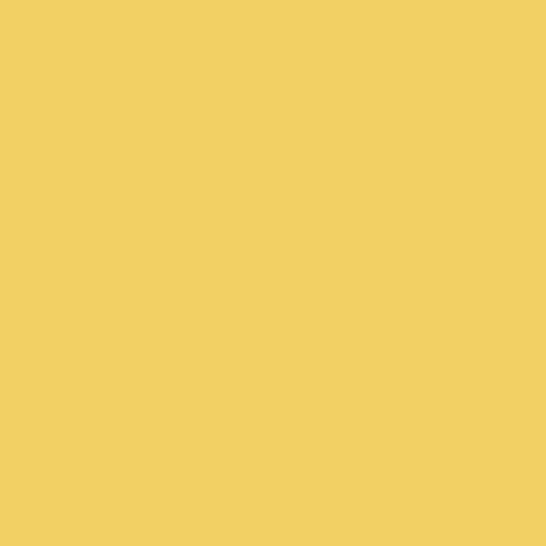 logo design lakeland florida